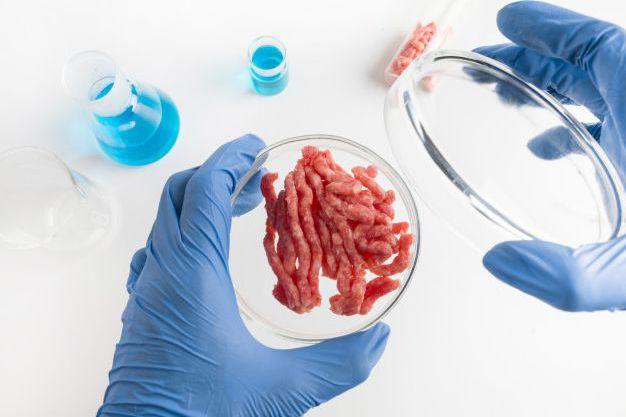 Искусственное мясо – пища будущего?