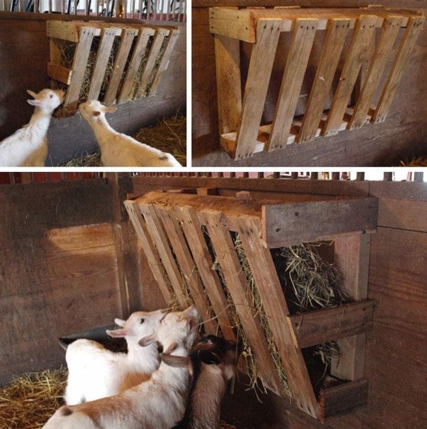Экономные чудо кормушки для скота.
