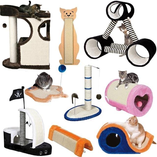 Что нужно купить для ухода за котенком.