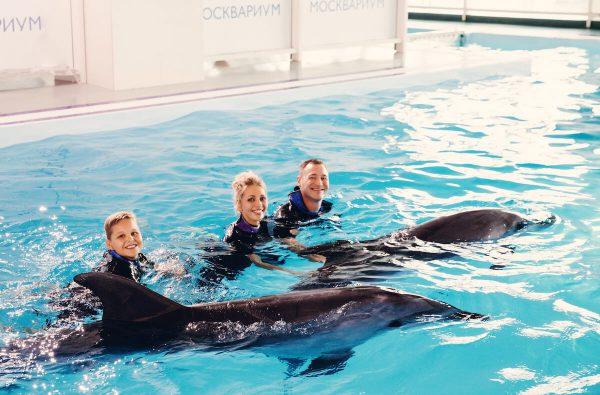 Москвариум и польза плавания с дельфинами.