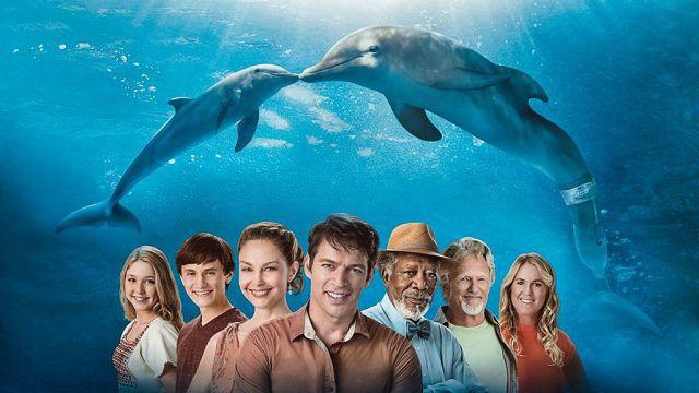 История дельфина, дельфины и люди.