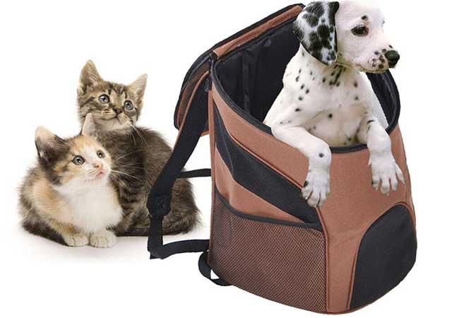 Переноска для домашних животных – правила выбора.
