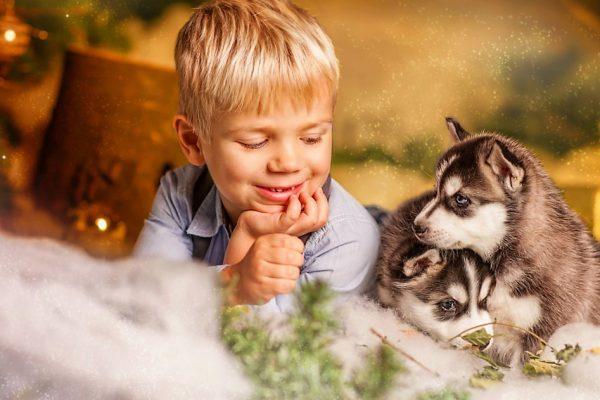 Стоит ли заводить собаку ребенку?