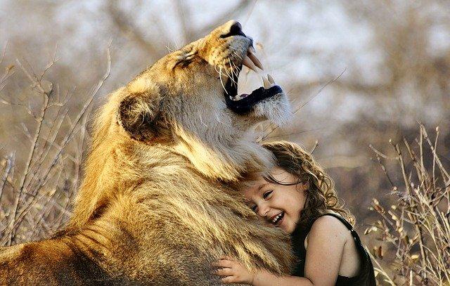 Как разговаривают животные и общаются между собой.